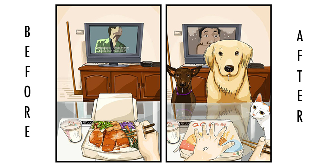vie-avant-apres-avoir-un-chien