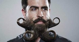 MONSIEUR-INCREDIBEARD