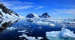 antartica-court-metrage-qui-donne-froid-aux-yeux