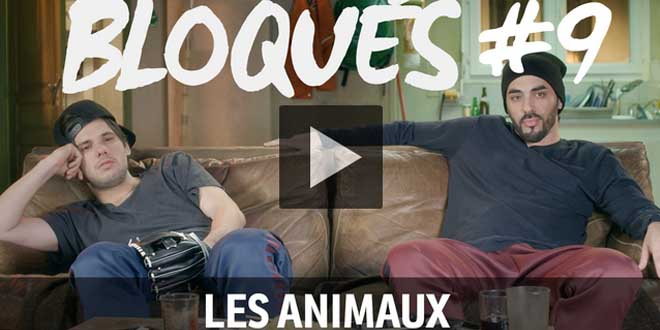 bloque-replay-episode-9-les-animeauxbloque-replay-episode-9-les-animeaux