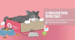 miaoubox-boxe-speciale-pour-votre-chat