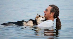 un-chien-remercie-les-hommes-qui-lont-sauve-de-la-noyade