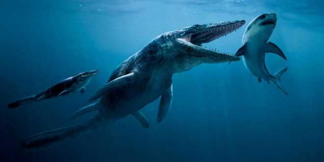 un-requin-devore-par-un-monstre-marin