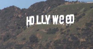 le-panneau-hollywood-a-bien-change-et-est-devenu-hollyweed