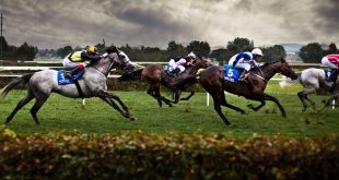 paris-sportif-par-intermediaire-broker-bookmakers