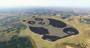 chine-panneau-solaire-geant-en-forme-de-panda