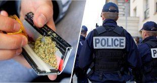 La- consommation-de-cannabis-bientot-passible-d-une-simple-amende