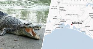 au-mexique-la-population-balance-un-violeur-presume-aux-crocodiles
