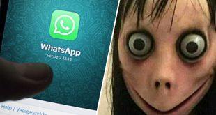 decouvrez-momo-le-jeu-whatsapp-archi-flippant