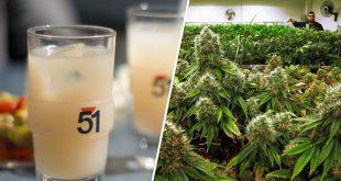 les-geants-de-lalcool-bientot-sur-le-marche-du-cannabis