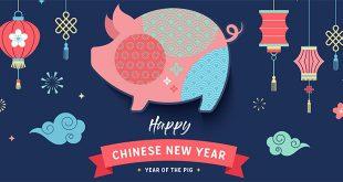 nouvel-an-chinois-2019-cochon