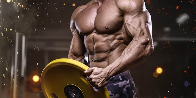 complement-alimentaire-musculation