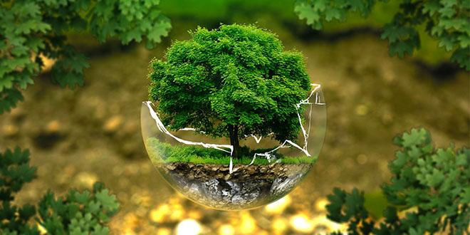 agir-pour-le-climat