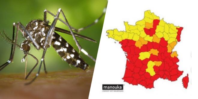 apres-le-covid-19-la-menace-des-moustiques-tigres-en-france