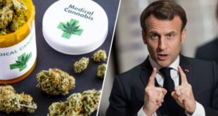 le-cannabis-therapeutique-legalise-grace-au-covid-19