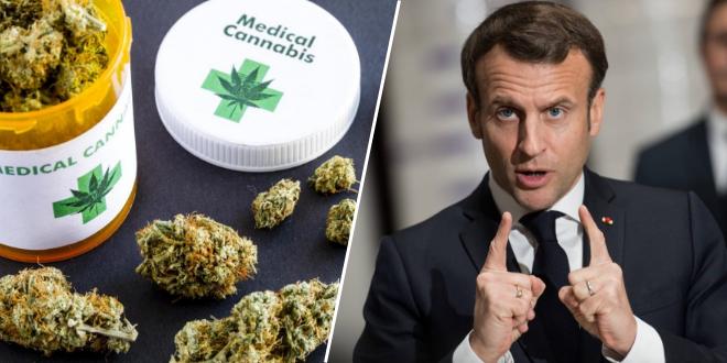 le-cannabis-therapeutique-legalise-grace-au-covid-19