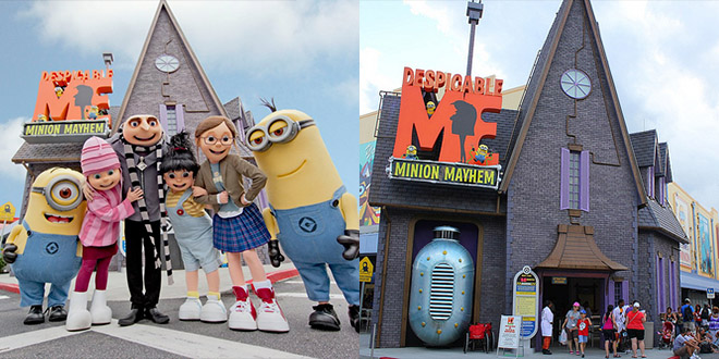 minion attraction